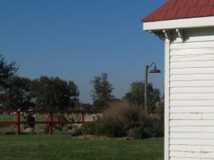 Photo Credit: George Ranch Historical Park