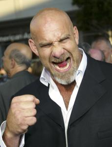 HOLLYWOOD - MAY 19: Actor Bill Goldberg attends the film premiere of The Longest Yard at Graumans Chinese Theater on May 19, 2005 in Hollywood, California. (Photo by Frederick M. Brown/Getty Images)